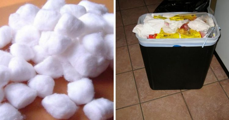 They went on national television and admitted what they - Put cotton ball trash can ...